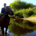 Horse Trekking in Westport – Die anstrengendste (und coolste) Art des Wanderns