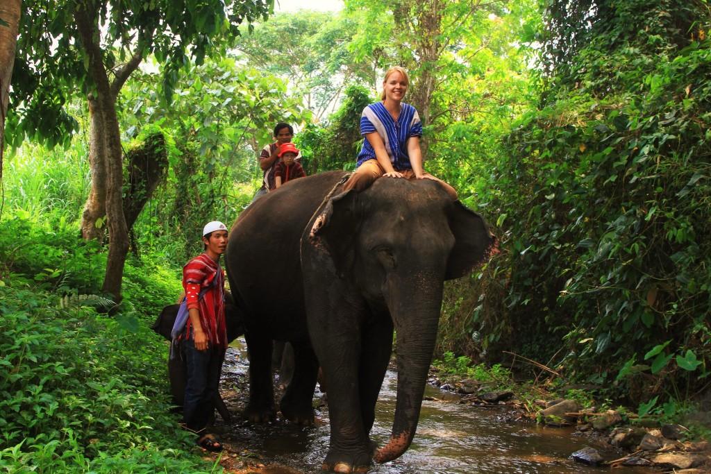 Elefantentrekking in Thailand