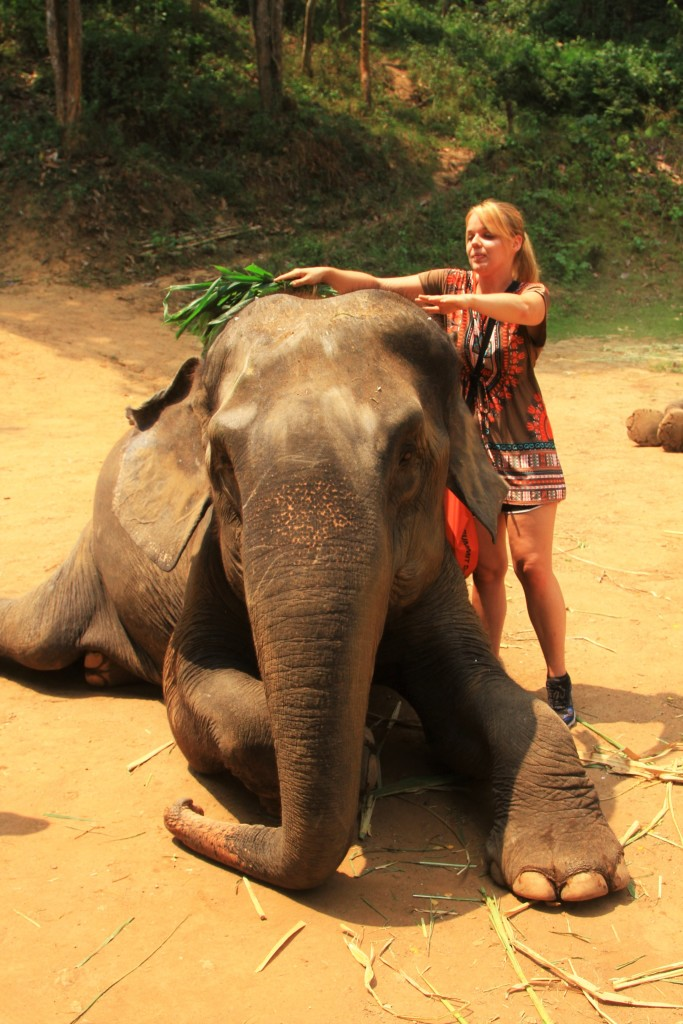 Elefantenstaub